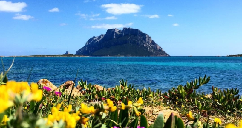 Go back home buying a North Sardinia Holiday Home