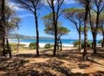 Veduta dalla pineta di Sant'Anna sulla spiaggia di Budoni RID